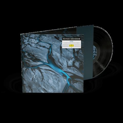 Patina (Vinyl) von Peter Gregson - LP jetzt im Bravado Store