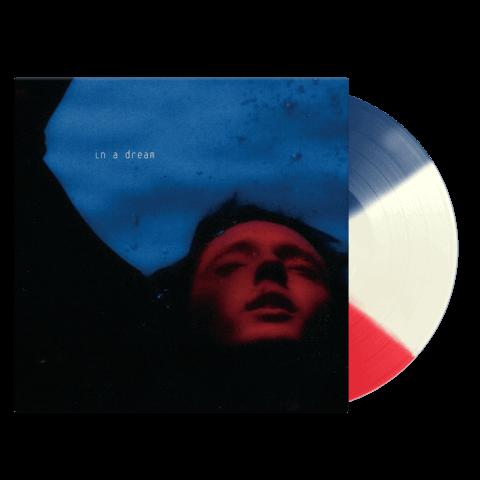 √In A Dream (Ltd. Exclusive LP) von Troye Sivan - LP jetzt im Bravado Shop