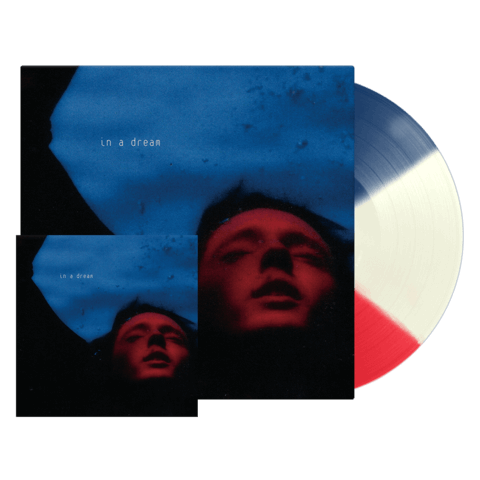 √In A Dream (Ltd. Exclusive LP + Art Print) von Troye Sivan -  jetzt im Bravado Shop