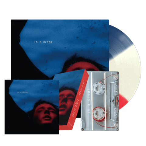√In A Dream (Exclusive LP + MC + Print) von Troye Sivan - music bundle jetzt im Bravado Shop