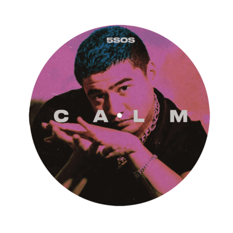√CALM (Ltd. Picture Disc with Calum Remix Track) von 5 Seconds of Summer -  jetzt im Bravado Shop