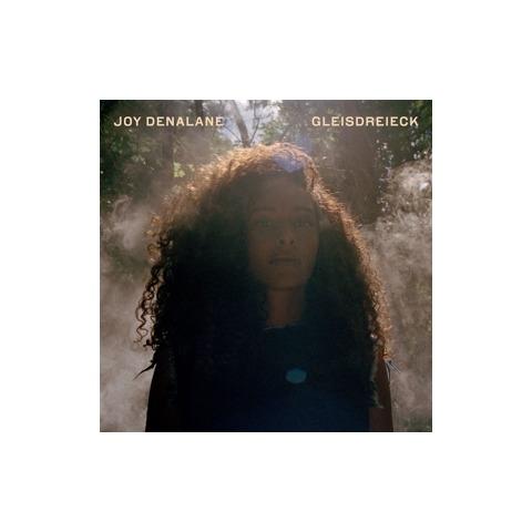 Gleisdreieck (2LP Inkl.DL Voucher) von Denalane,Joy - LP jetzt im Bravado Shop