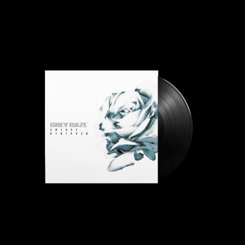 Amends...Stripped (Ltd. Vinyl 12'' EP) von Grey Daze - LP jetzt im Bravado Store